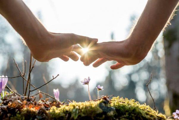 Kveta healing